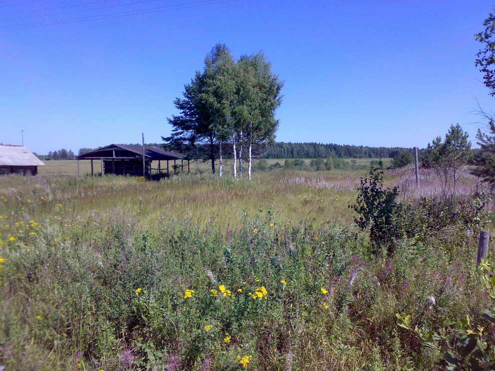 Земельный участок: 3 Га, Калининский район