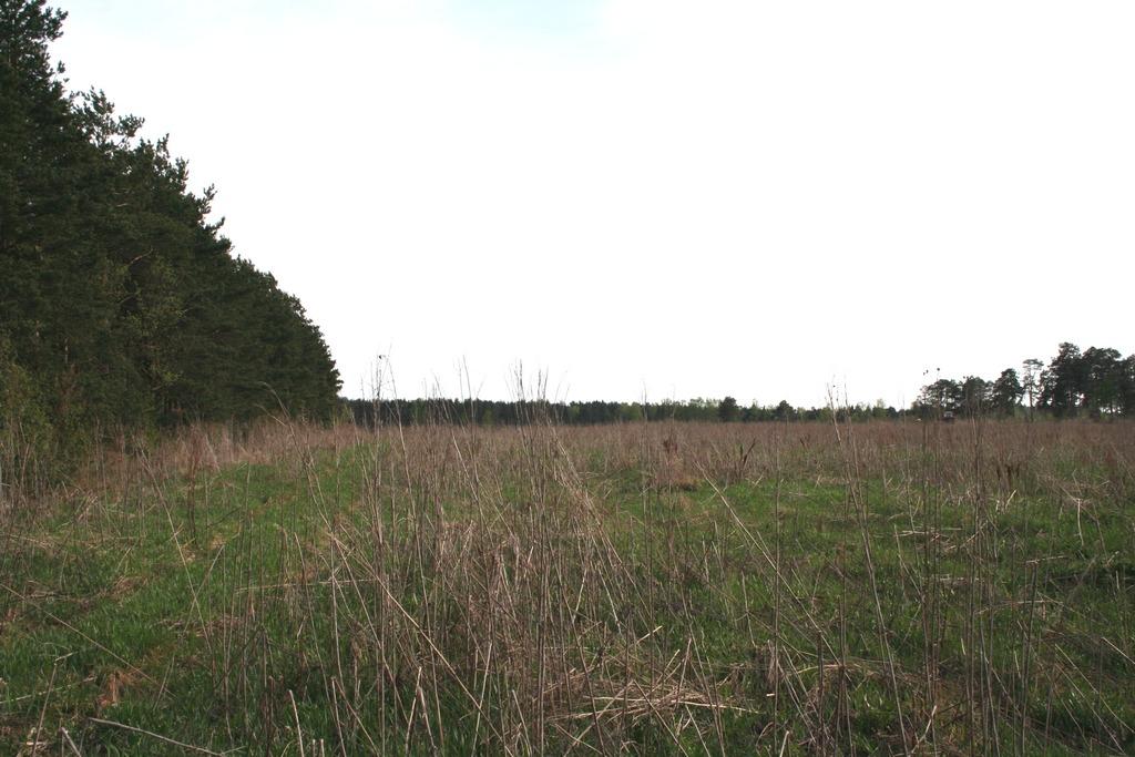 Земельный участок: 964,7 Га, Лихославльский район