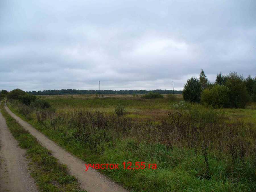 Земельный участок: 12,55 Га, Калининский район