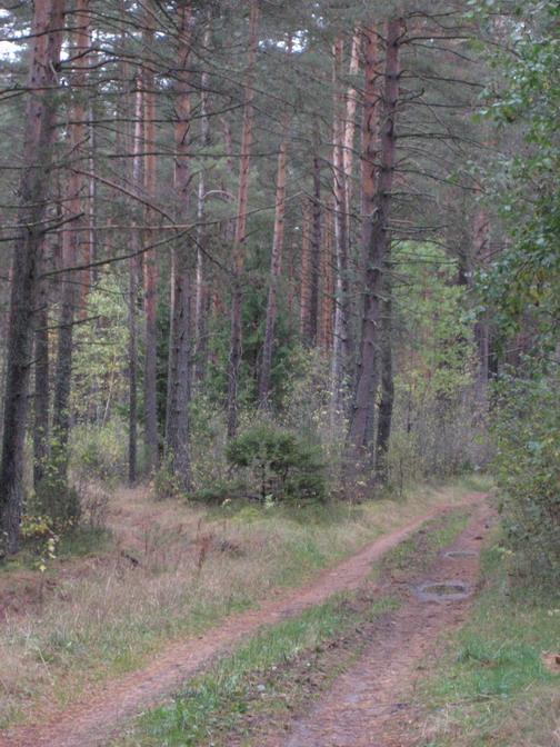 Земельный участок: 14 Га, Калининский район