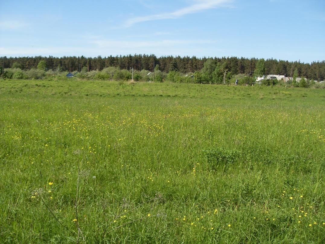 Земельный участок: 7 Га, Калининский район