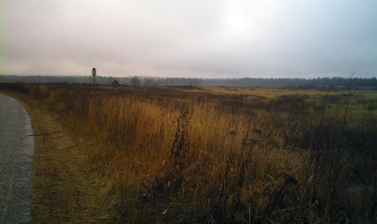Земельный участок: 21,4 Га, Зубцовский район