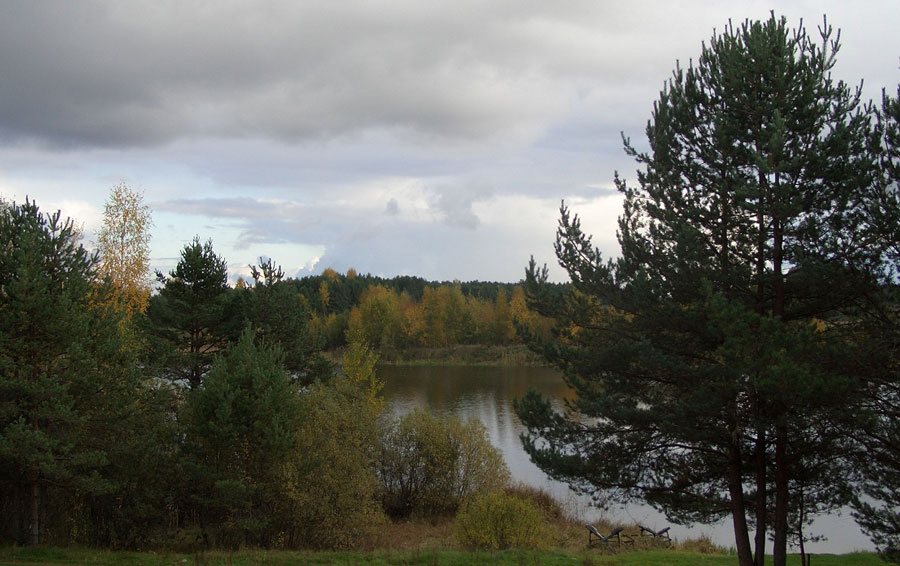 Земельный участок: 28 соток, Осташковский район