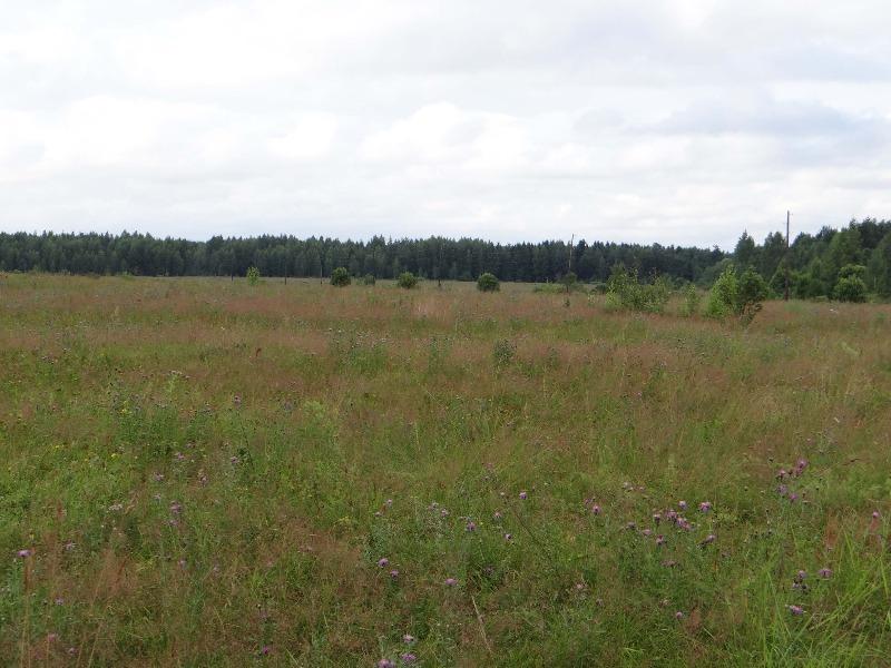 Земельный участок: 20,1 Га, Калининский район