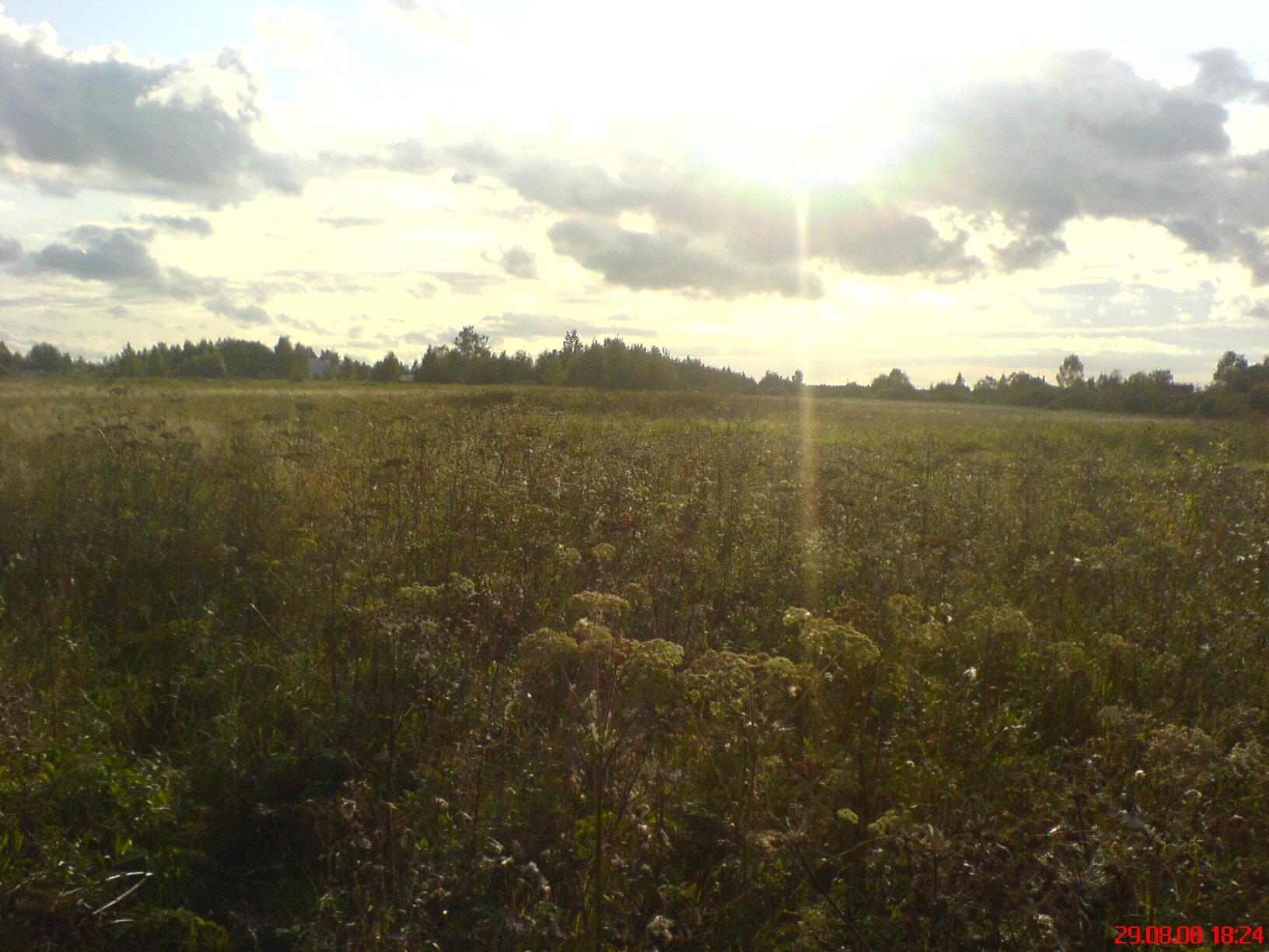 Земельный участок: 40 соток, Калязинский район
