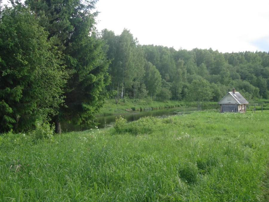 Земельный участок: 15 соток, Селижаровский район