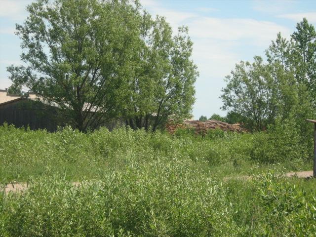 Земельный участок: 53 Га, Оленинский район