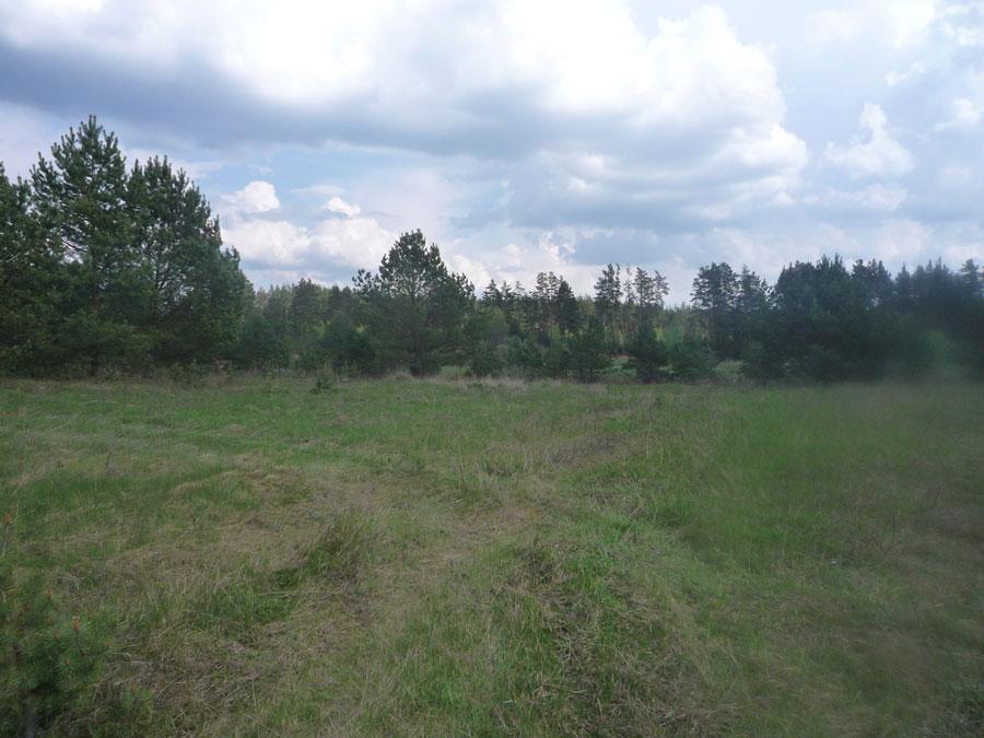 Земельный участок: 4,8 Га, Калининский район