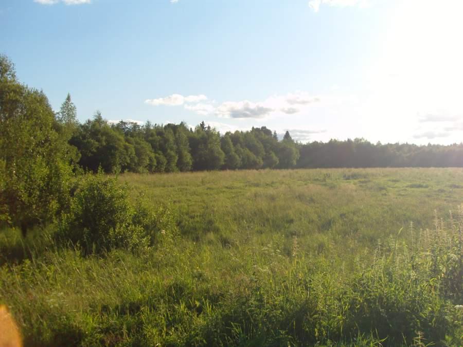 Земельный участок: 15 Га, Осташковский район