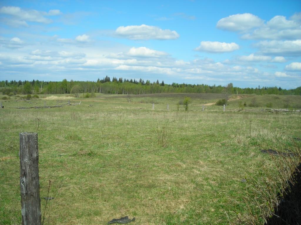Земельный участок: 30 соток, Пеновский район