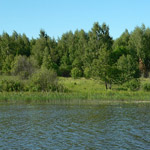 Земельный участок: 12 Га, Кимрский район