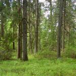 Земельный участок: 37,35 Га, Калининский район