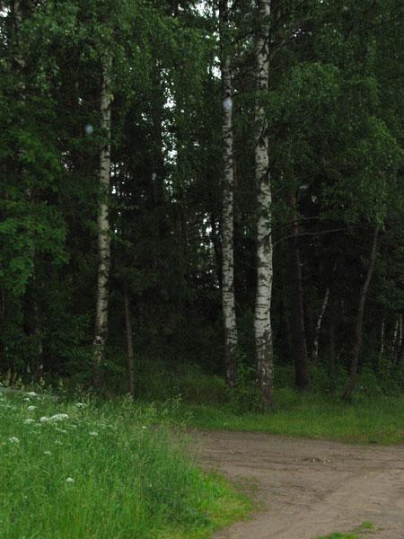 Земельный участок: 6 Га, Кимрский район