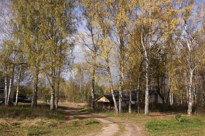 Земельный участок: 10,3 Га, Ржевский район