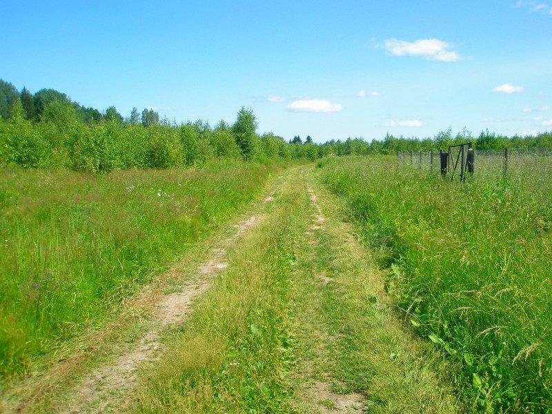 Земельный участок: 35 соток, Зубцовский район
