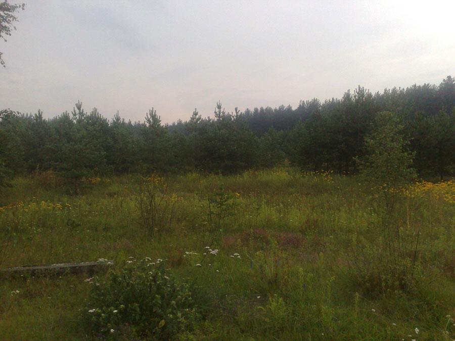 Земельный участок: 50 соток, Старицкий район