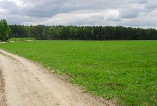 Земельный участок: 11,1 Га, Зубцовский район